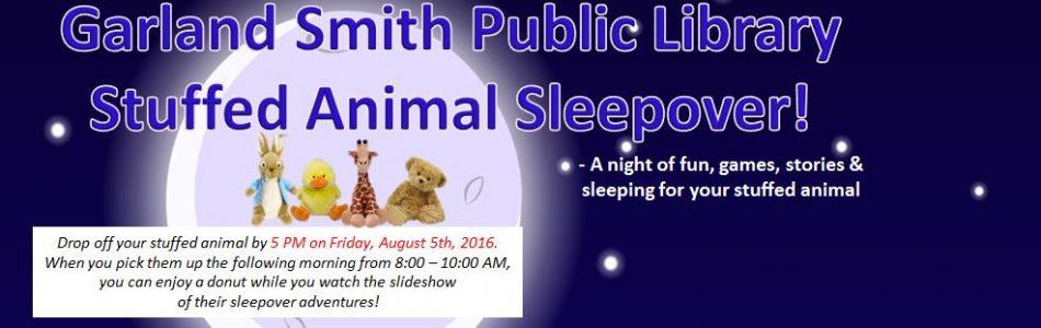 Stuffed Animal Sleepover!  Friday, Aug 5th!